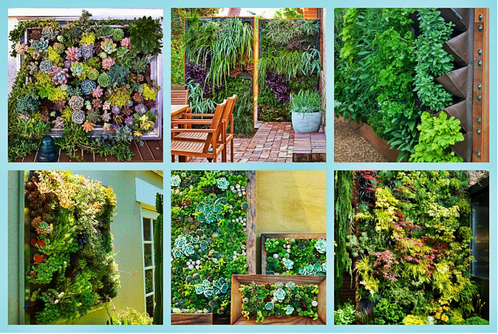vertical garden collage
